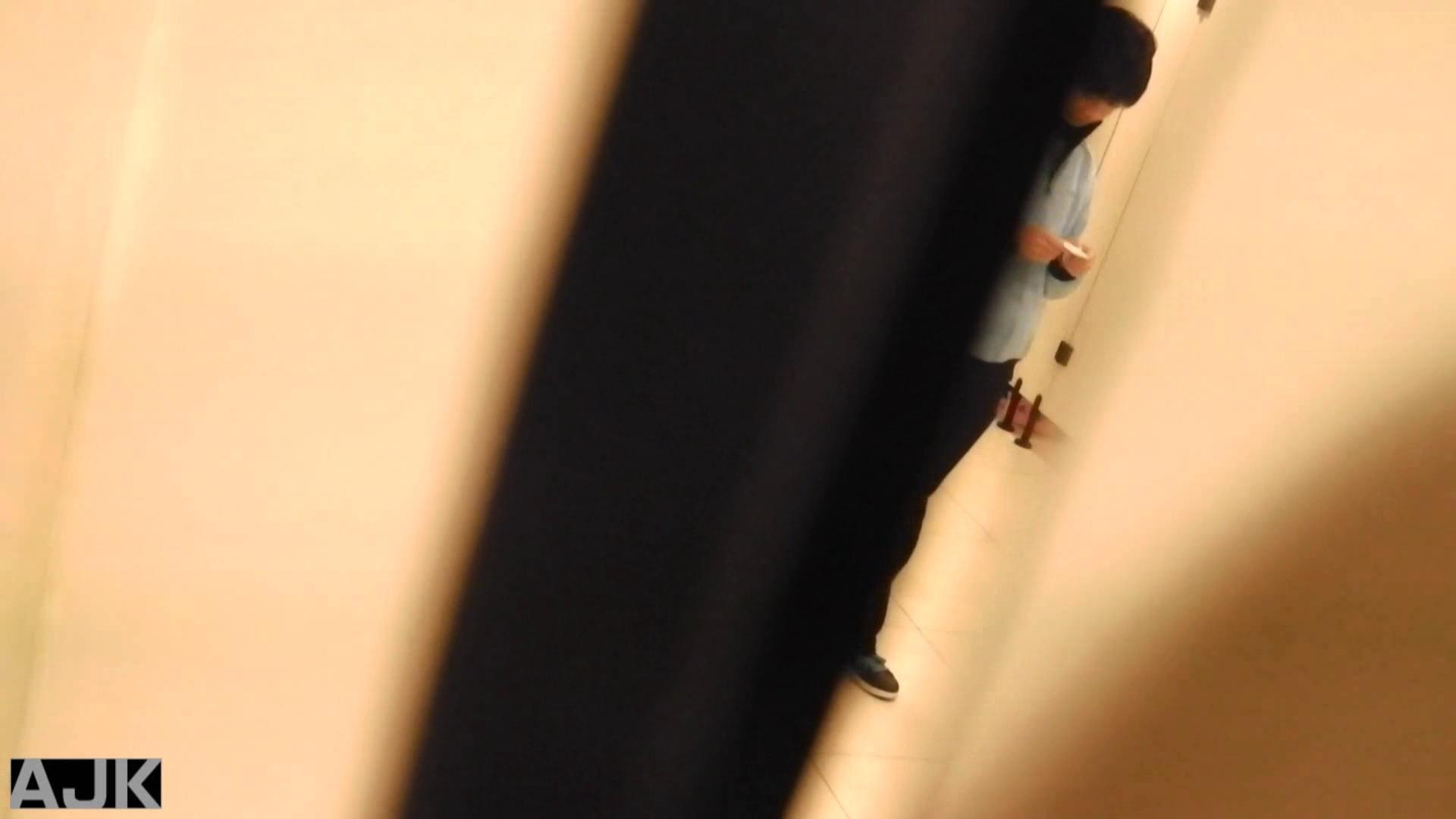 隣国上階級エリアの令嬢たちが集うデパートお手洗い Vol.10 オマンコ   無修正おまんこ  28画像 13