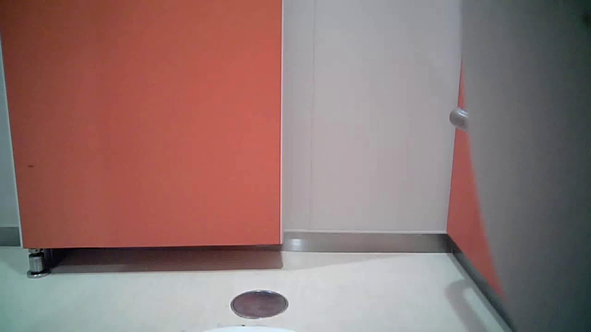 痴態洗面所 Vol.04 上と下の割合が絶妙です。 盛合せ   丸見えマンコ  60画像 31