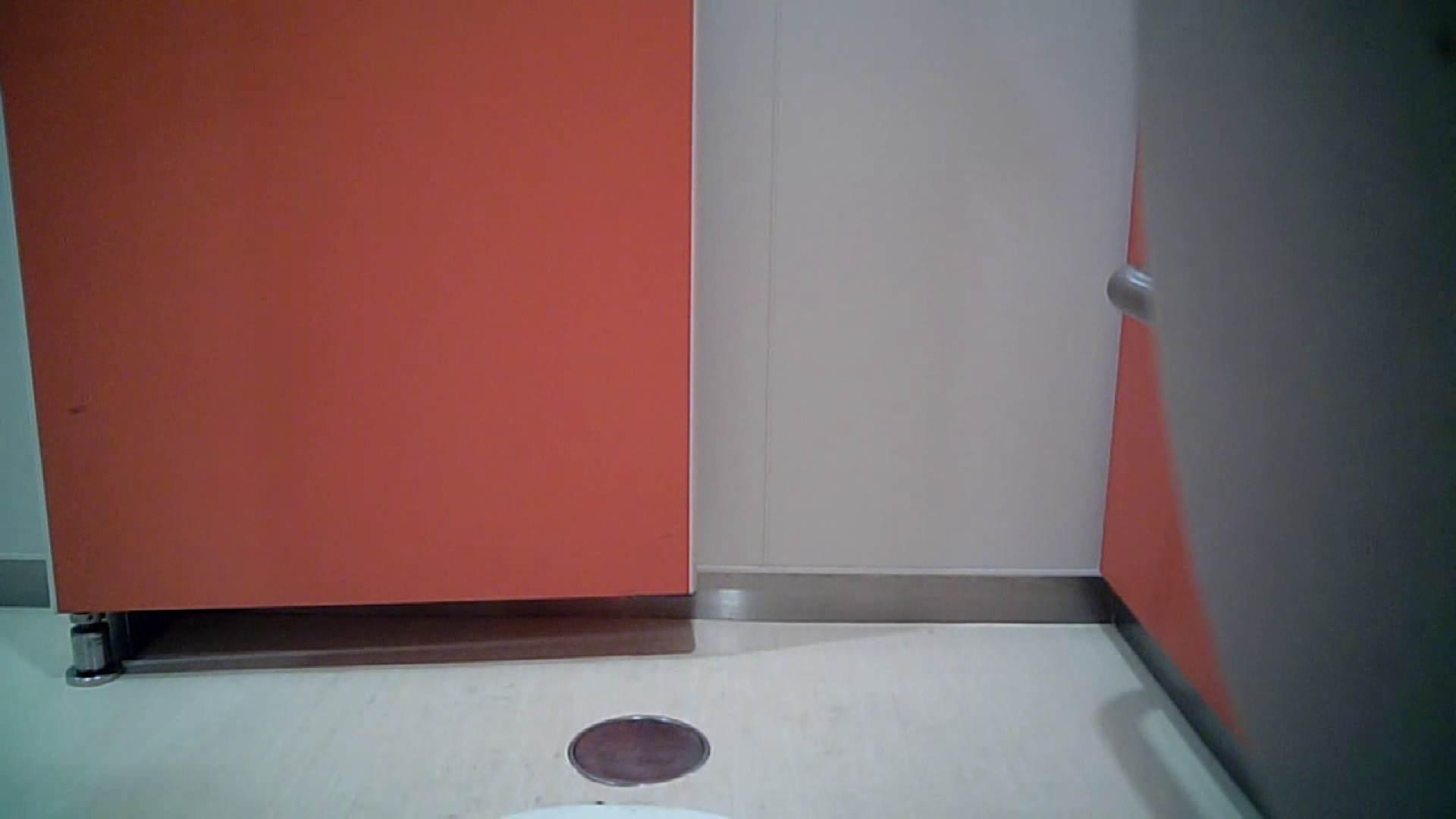 痴態洗面所 Vol.04 上と下の割合が絶妙です。 盛合せ   丸見えマンコ  60画像 32