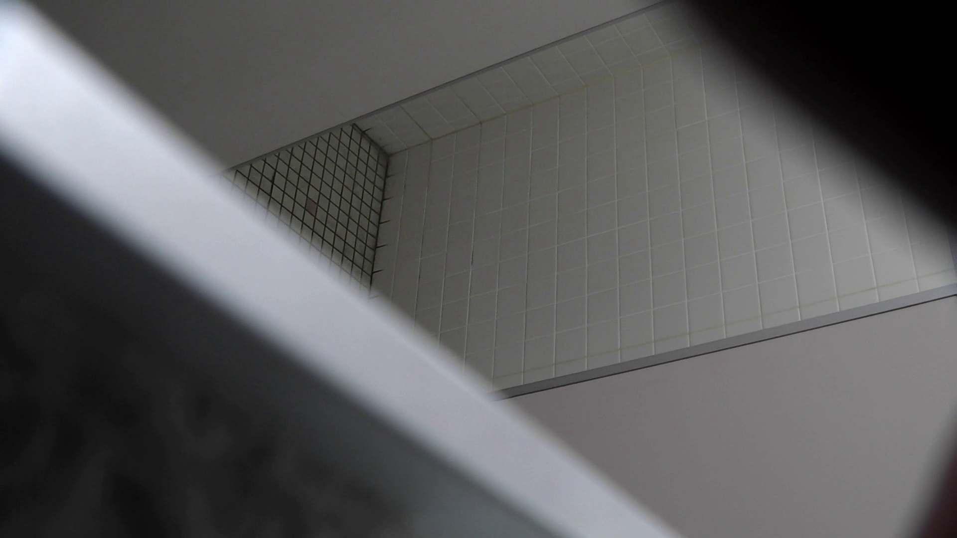お銀さんの「洗面所突入レポート!!」無料お試し動画!!その1 お姉さん | 丸見えマンコ  31画像 2