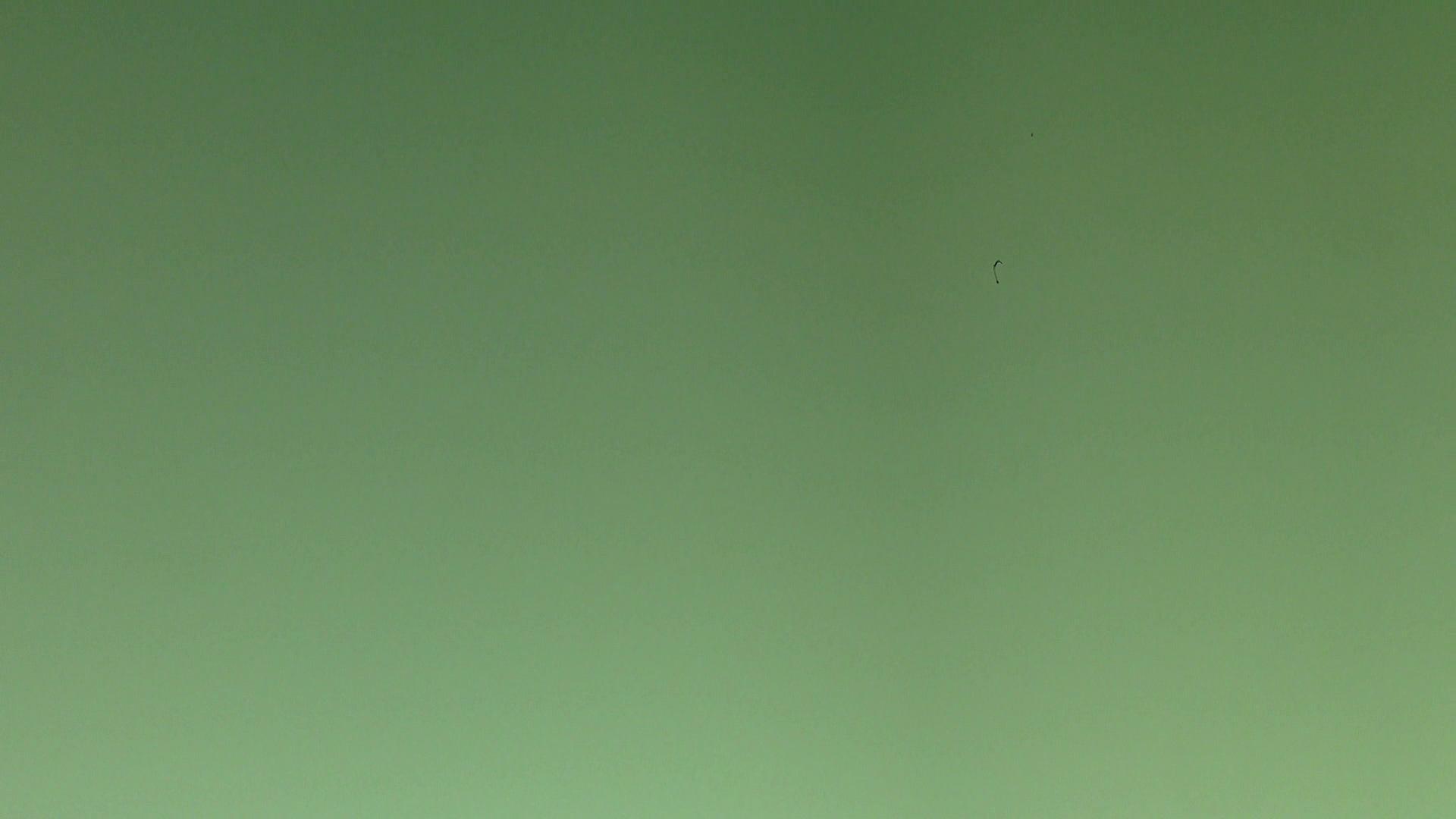 ヒトニアラズvol.3 値下げ | ギャル  97画像 27