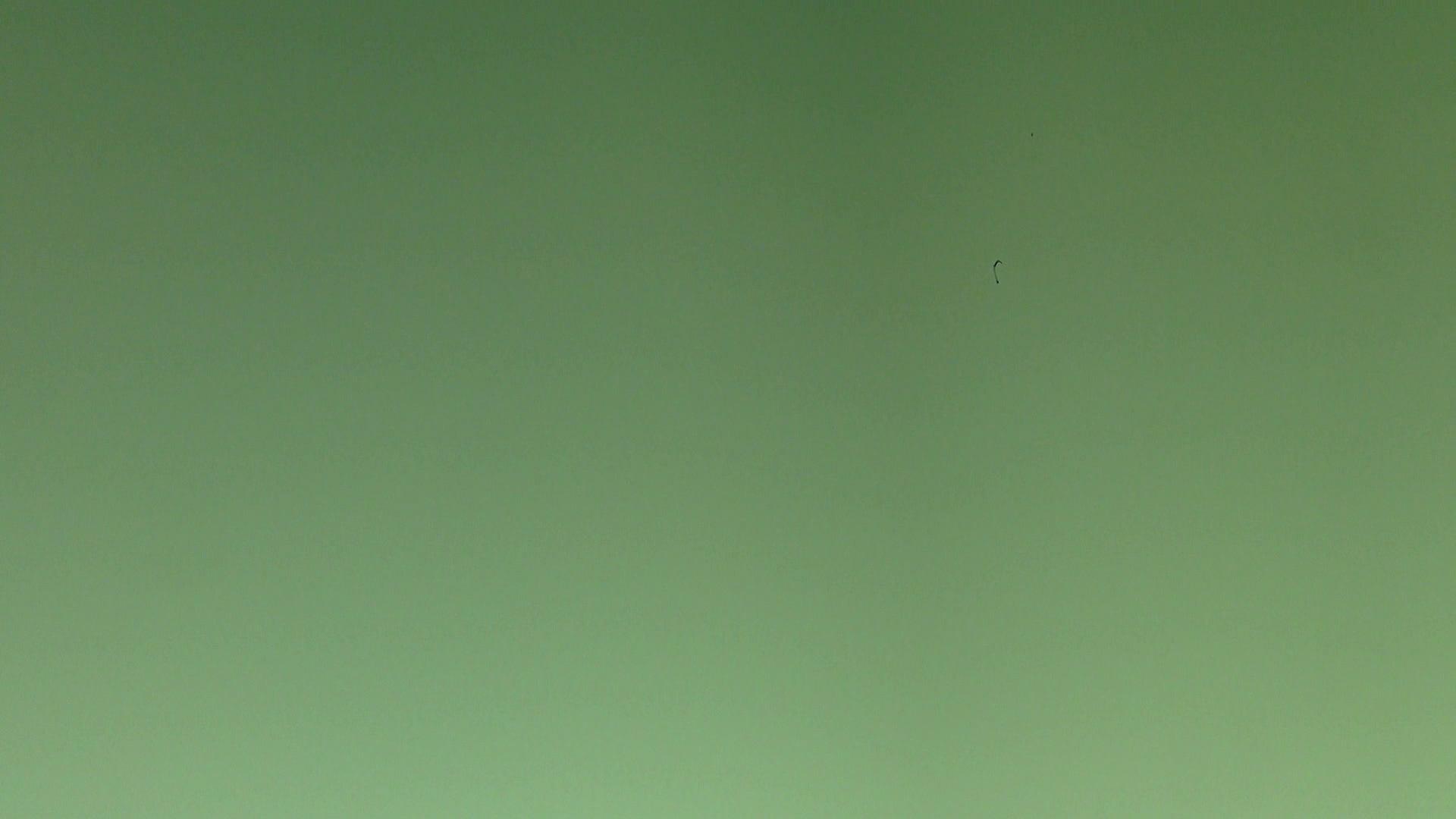 ヒトニアラズvol.3 値下げ | ギャル  97画像 28