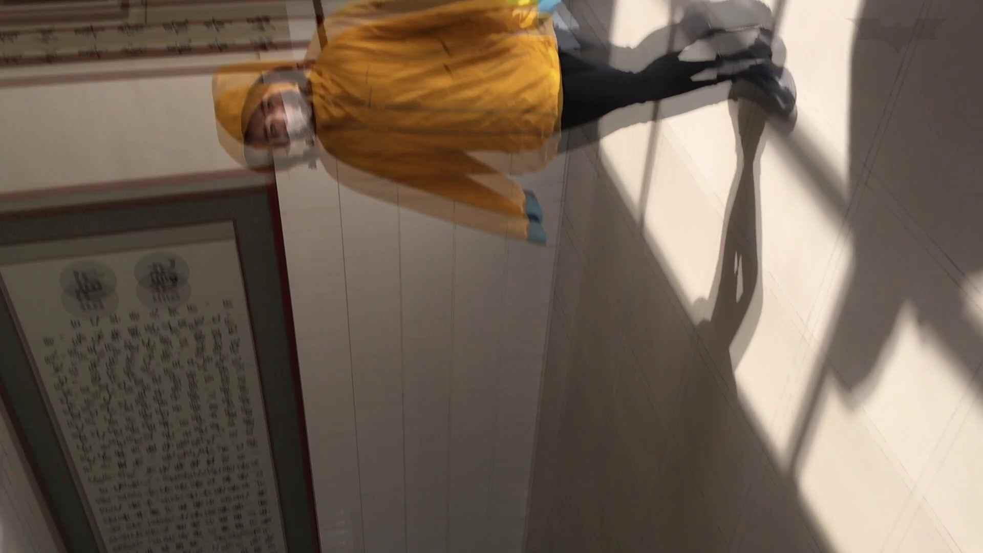 芸術大学ガチ潜入盗撮 JD盗撮 美女の洗面所の秘密 Vol.91 盗撮 | 高画質  97画像 17