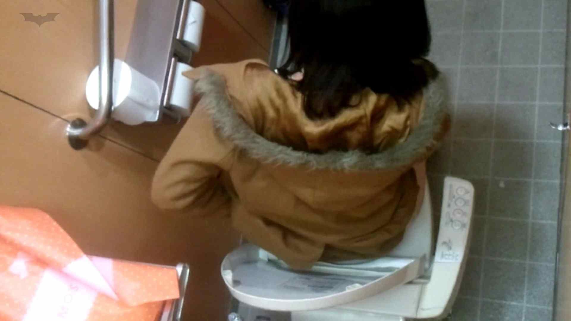 化粧室絵巻 商い場編 VOL.22 お姉さん | ギャル  112画像 84