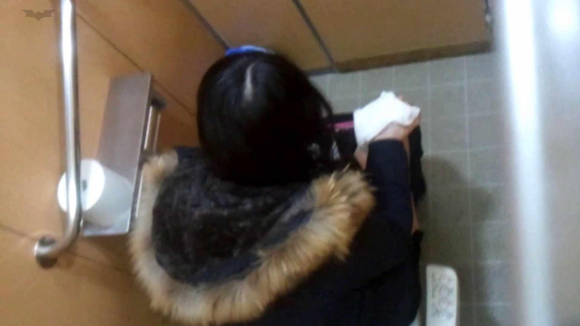 化粧室絵巻 商い場編 VOL.27 お姉さん | 高画質  69画像 44