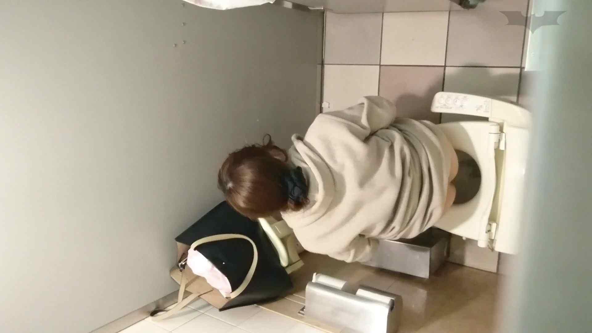 化粧室絵巻 ショッピングモール編 VOL.11 美肌   丸見えマンコ  90画像 9