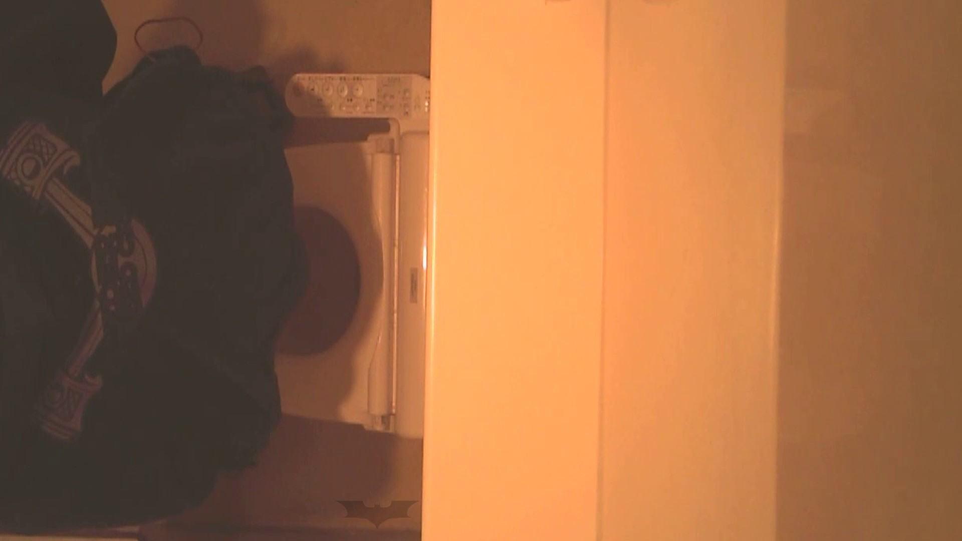 潜入!!全国女子洗面所盗撮 Vol.07 投稿 | 高画質  106画像 36