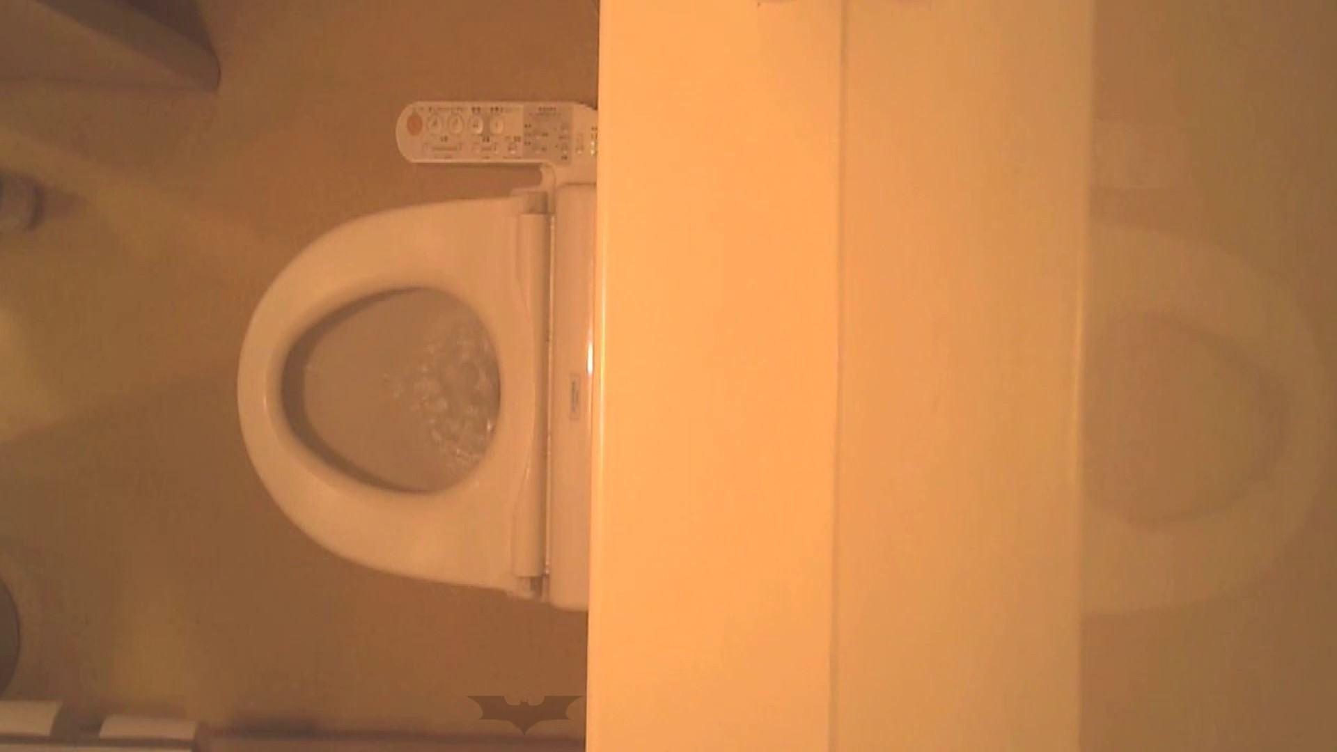 潜入!!全国女子洗面所盗撮 Vol.07 投稿 | 高画質  106画像 63