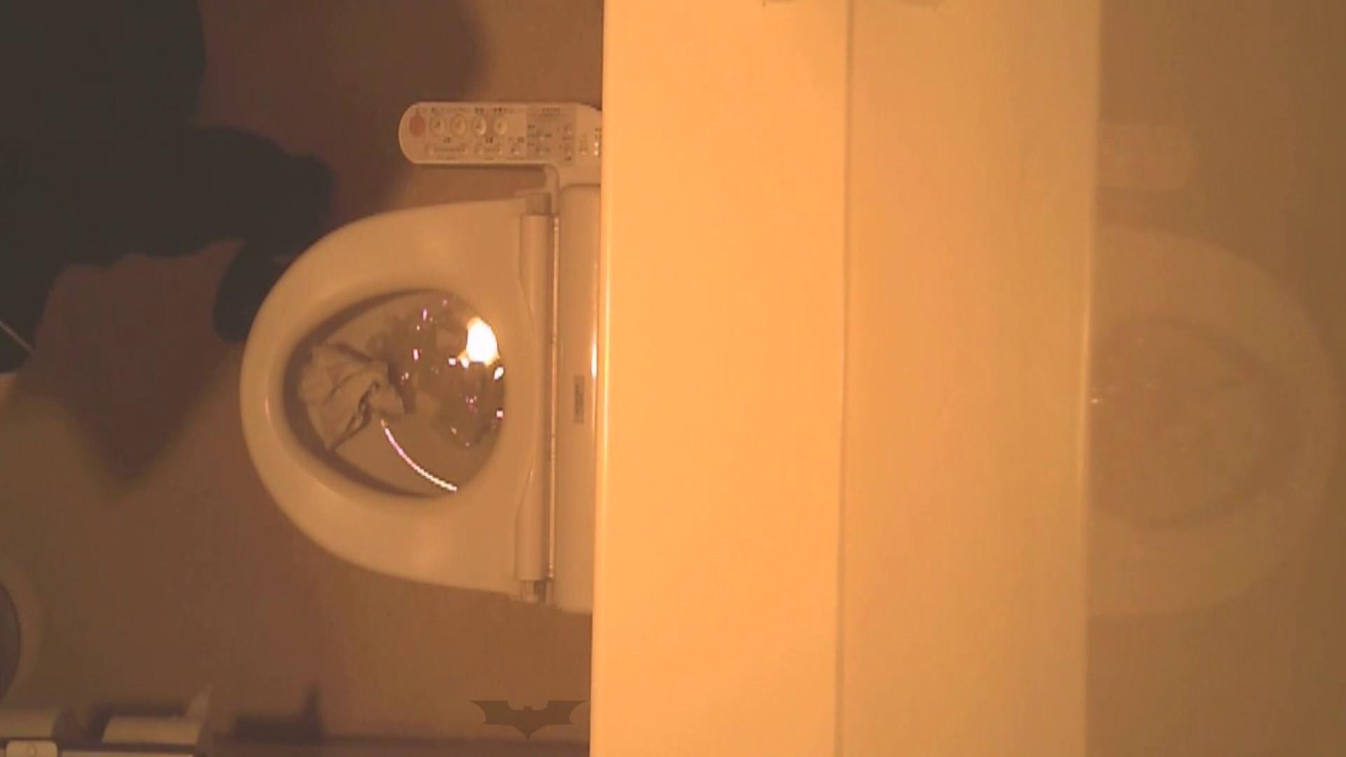 潜入!!全国女子洗面所盗撮 Vol.07 投稿 | 高画質  106画像 69