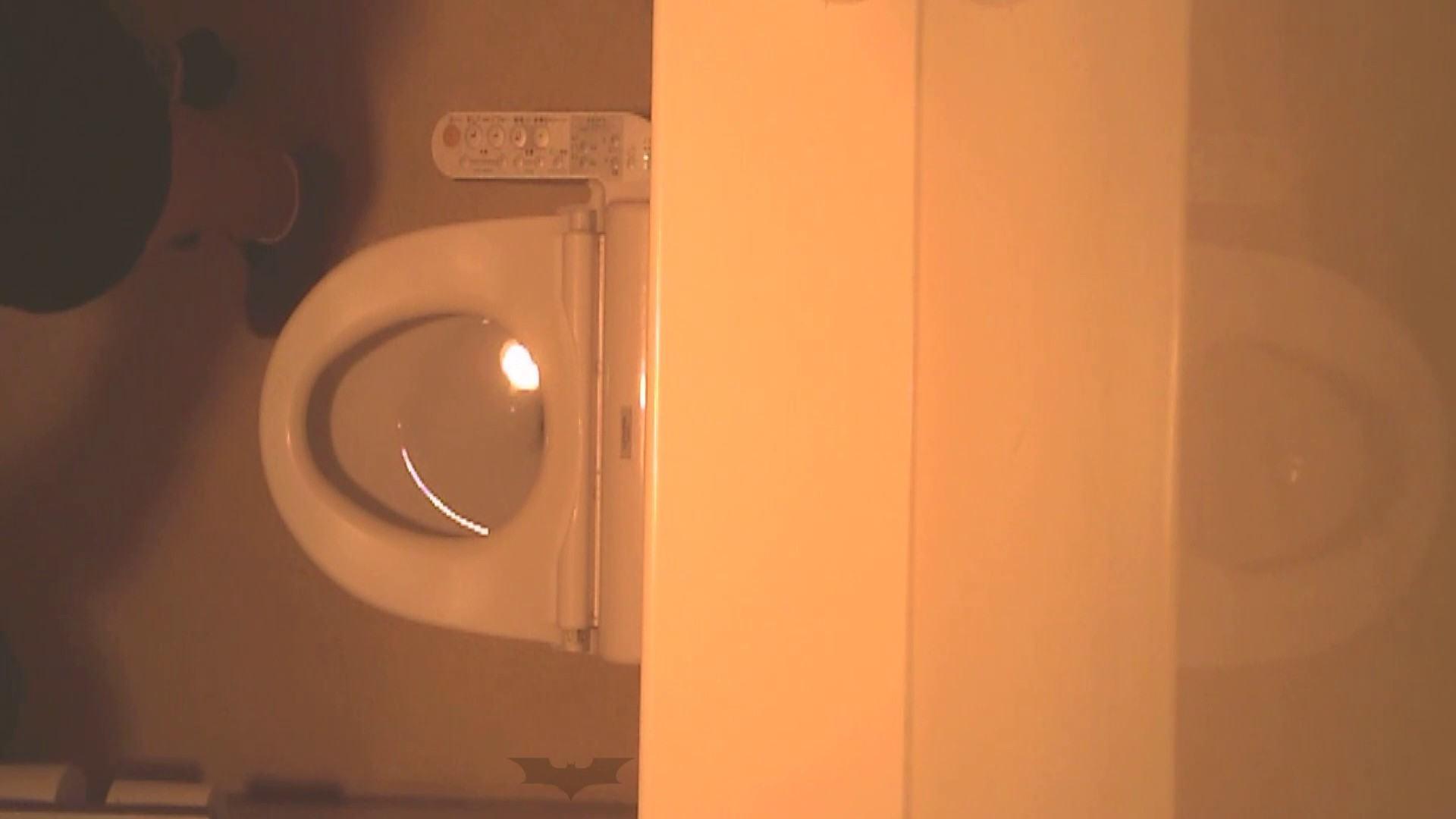 潜入!!全国女子洗面所盗撮 Vol.07 投稿 | 高画質  106画像 99