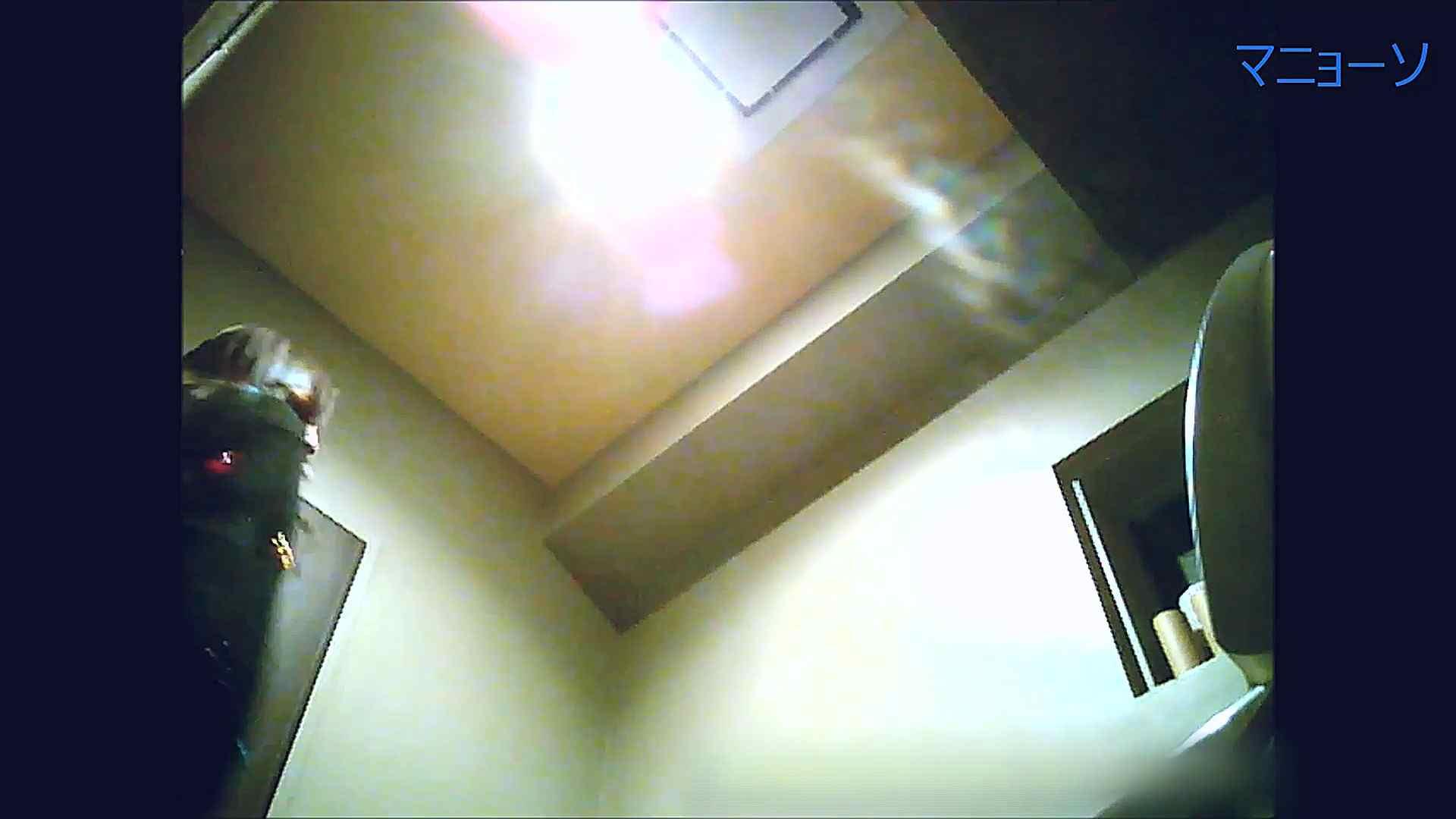 トイレでひと肌脱いでもらいました (OL編)Vol.13 高画質   トイレ  95画像 2