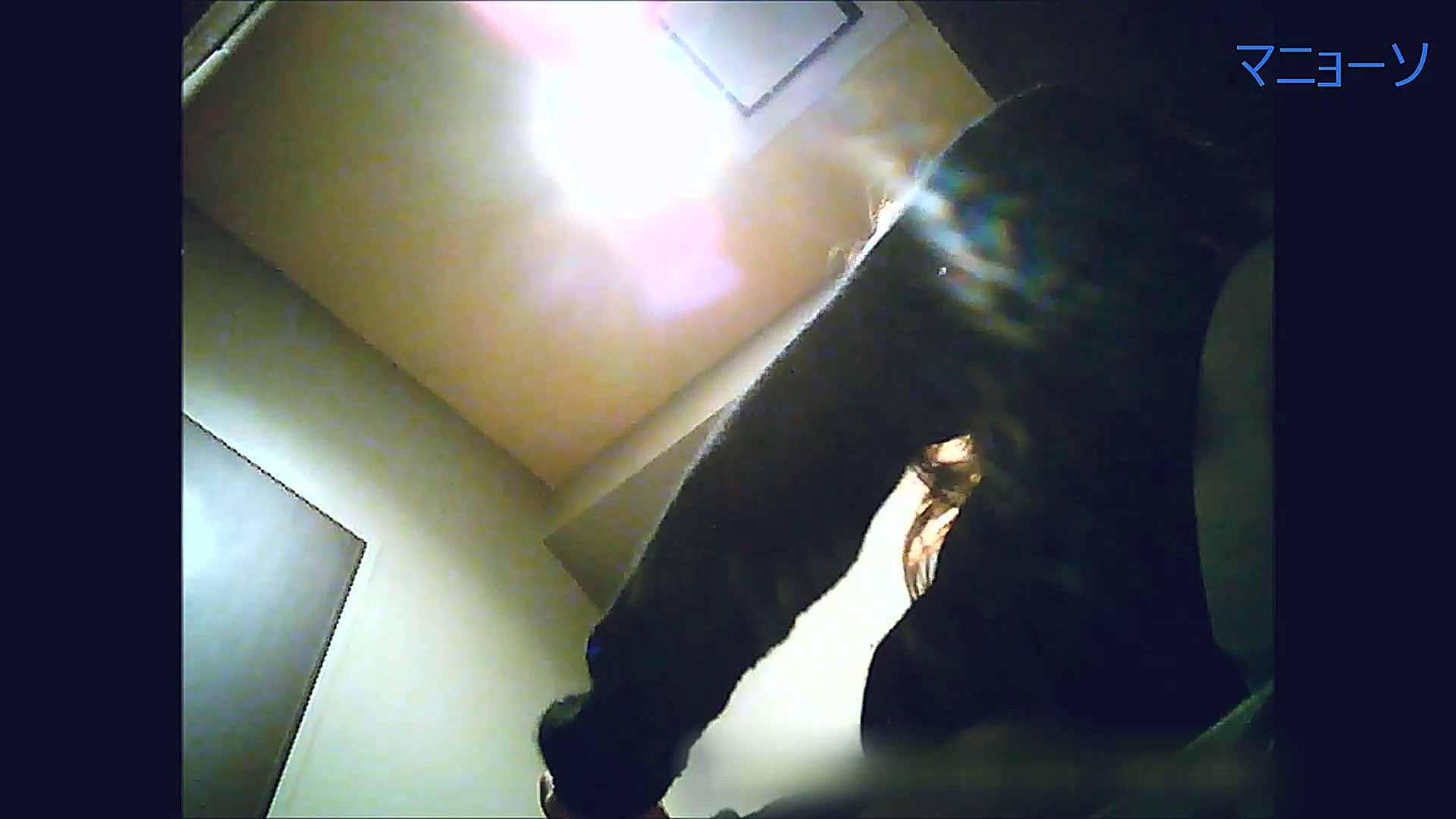 トイレでひと肌脱いでもらいました (OL編)Vol.13 高画質   トイレ  95画像 31