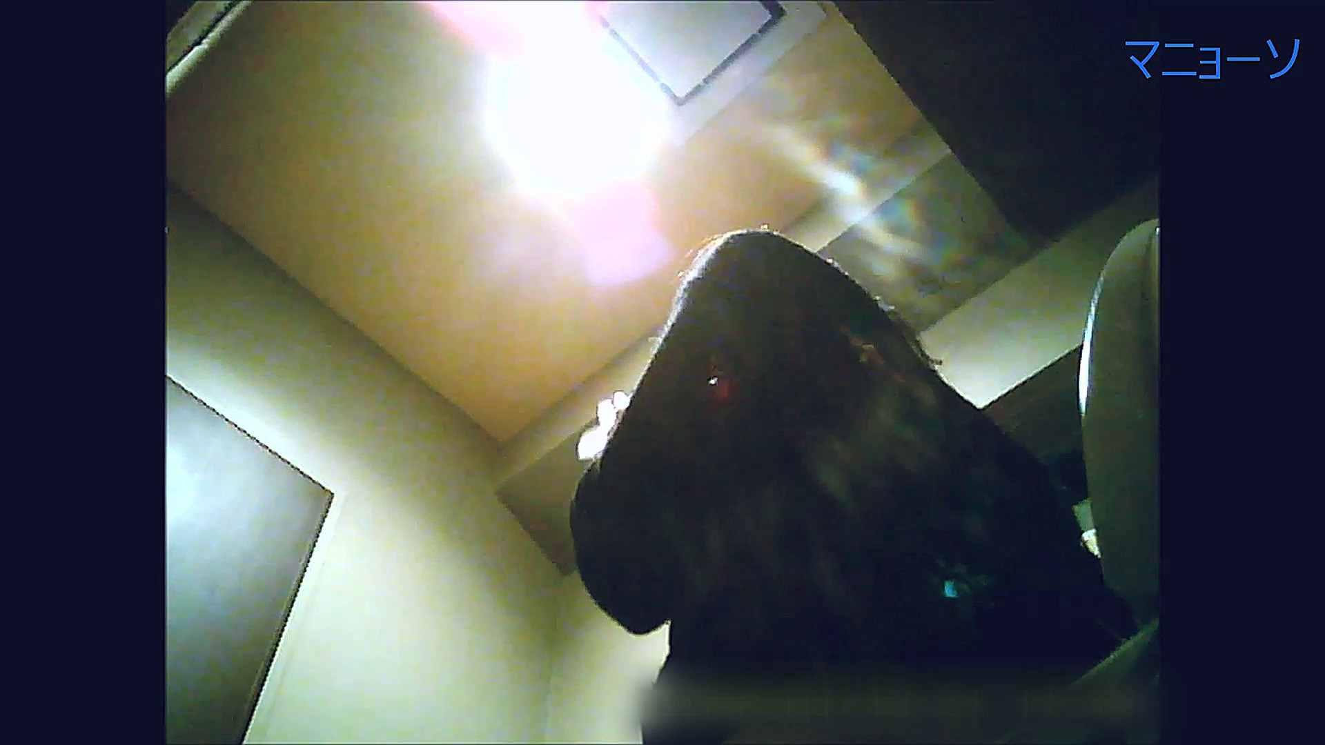 トイレでひと肌脱いでもらいました (OL編)Vol.13 高画質   トイレ  95画像 35