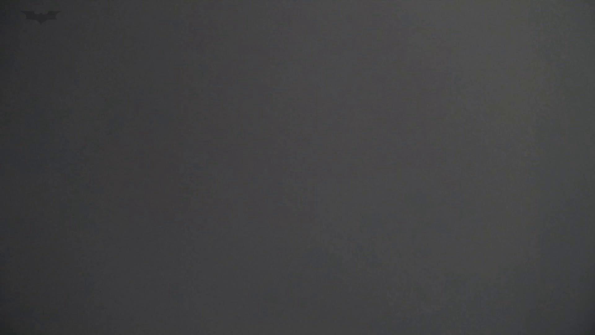 なんだこれVol.12 美魔女登場、 HD万歳!! 違いが判る映像美!! 洗面所 | 丸見えマンコ  20画像 12