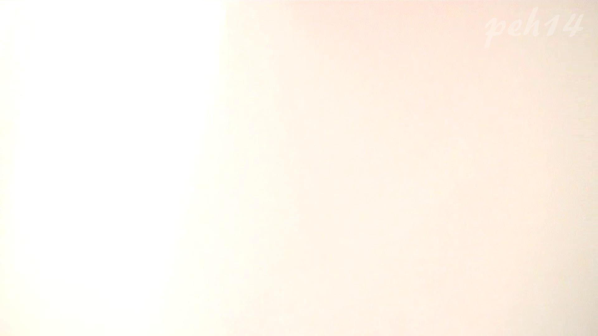 ※100個限定販売 至高下半身盗撮 プレミアム Vol.14 ハイビジョン お姉さん   洗面所  105画像 12
