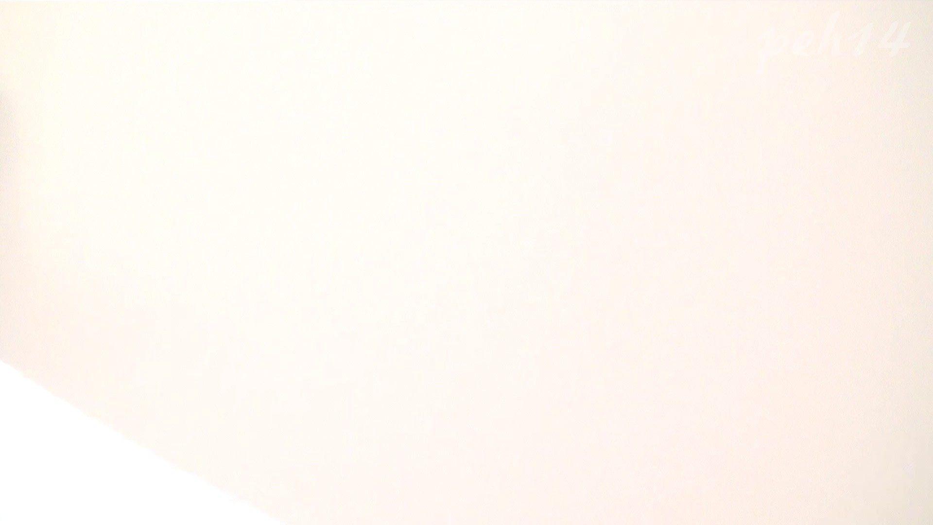 ※100個限定販売 至高下半身盗撮 プレミアム Vol.14 ハイビジョン お姉さん   洗面所  105画像 19