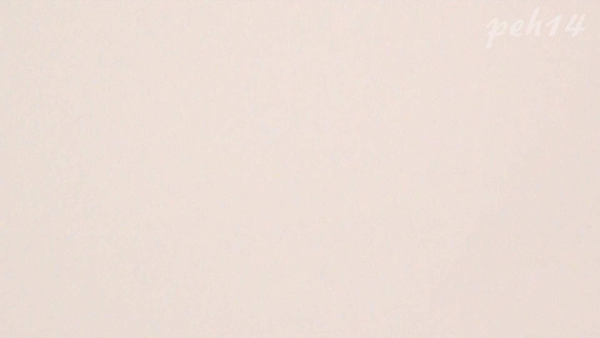 ※100個限定販売 至高下半身盗撮 プレミアム Vol.14 ハイビジョン お姉さん   洗面所  105画像 52