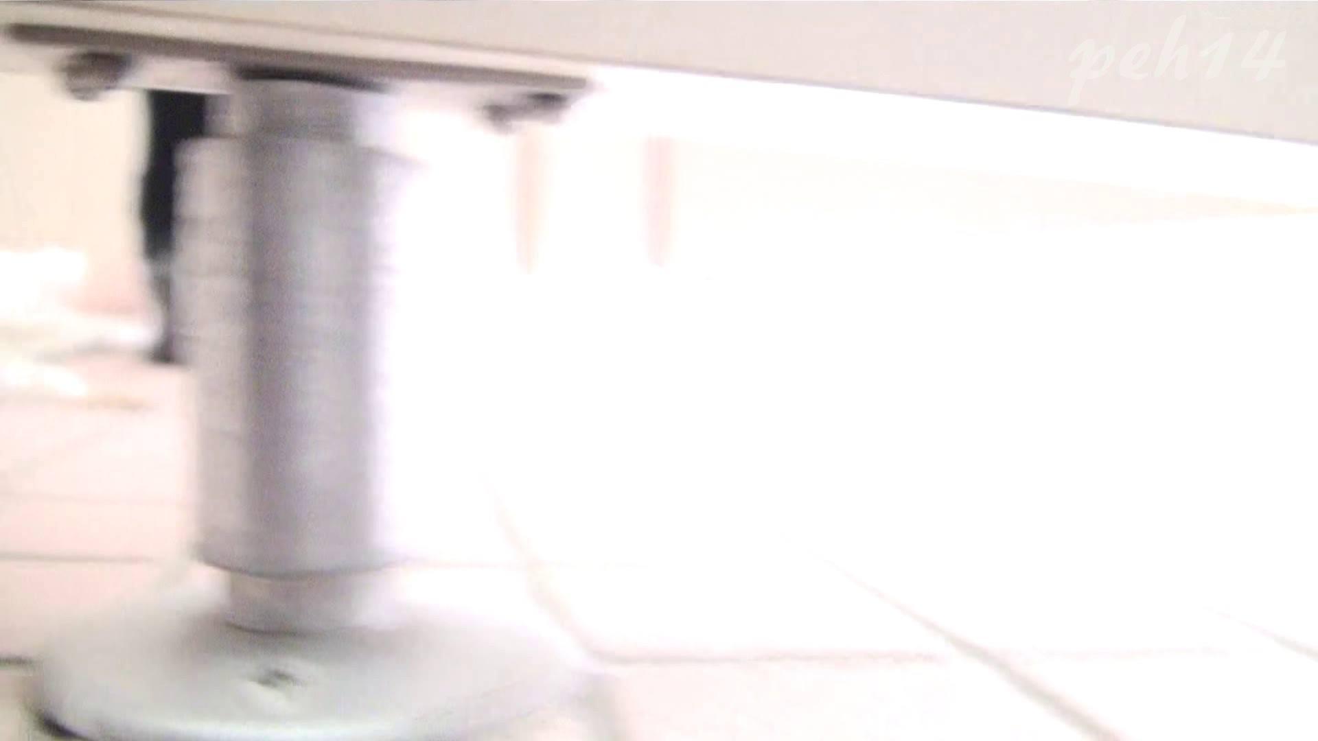 ※100個限定販売 至高下半身盗撮 プレミアム Vol.14 ハイビジョン お姉さん   洗面所  105画像 55
