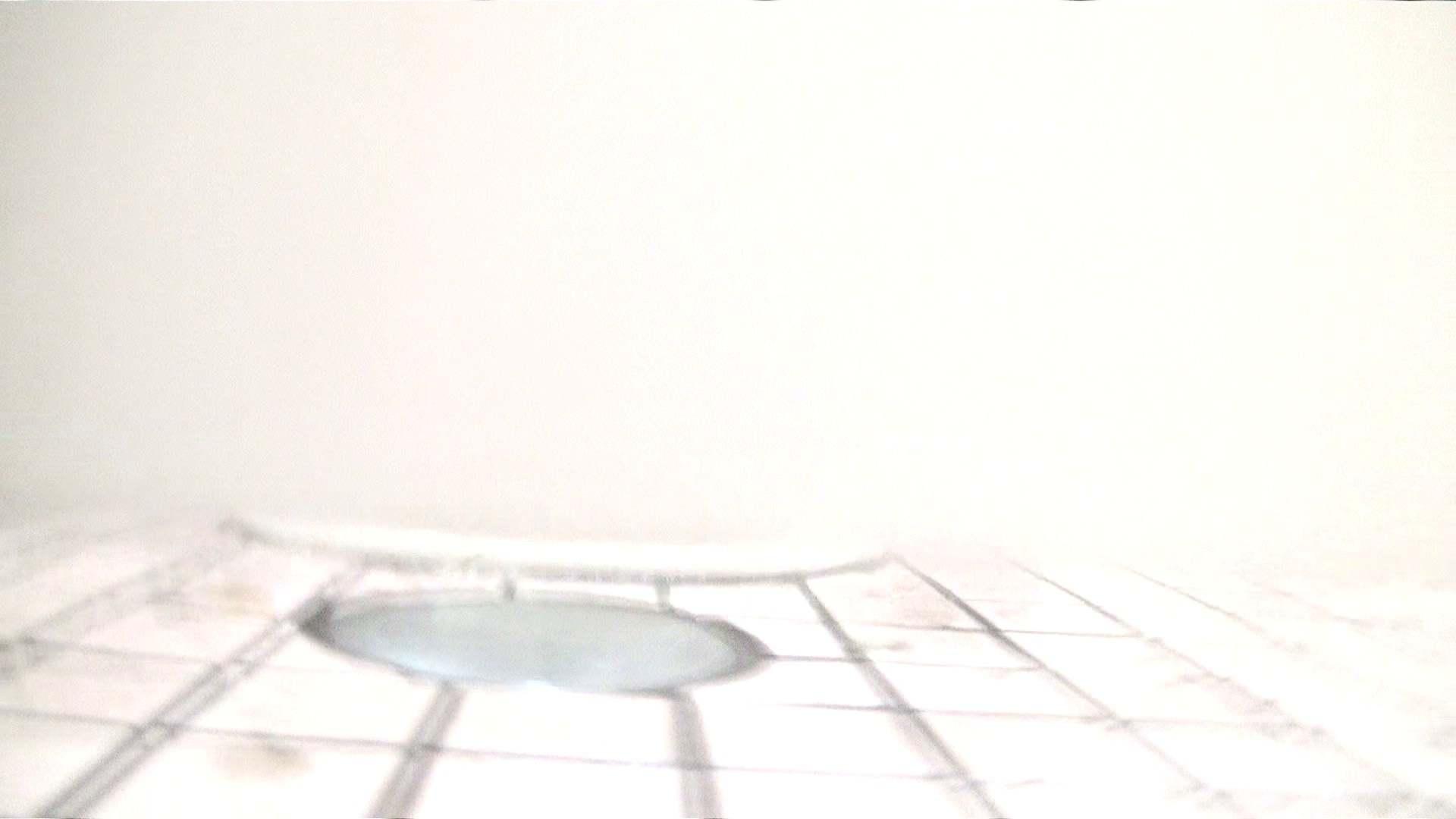 ※100個限定販売 至高下半身盗撮 プレミアム Vol.16 ハイビジョン お姉さん   洗面所  46画像 46