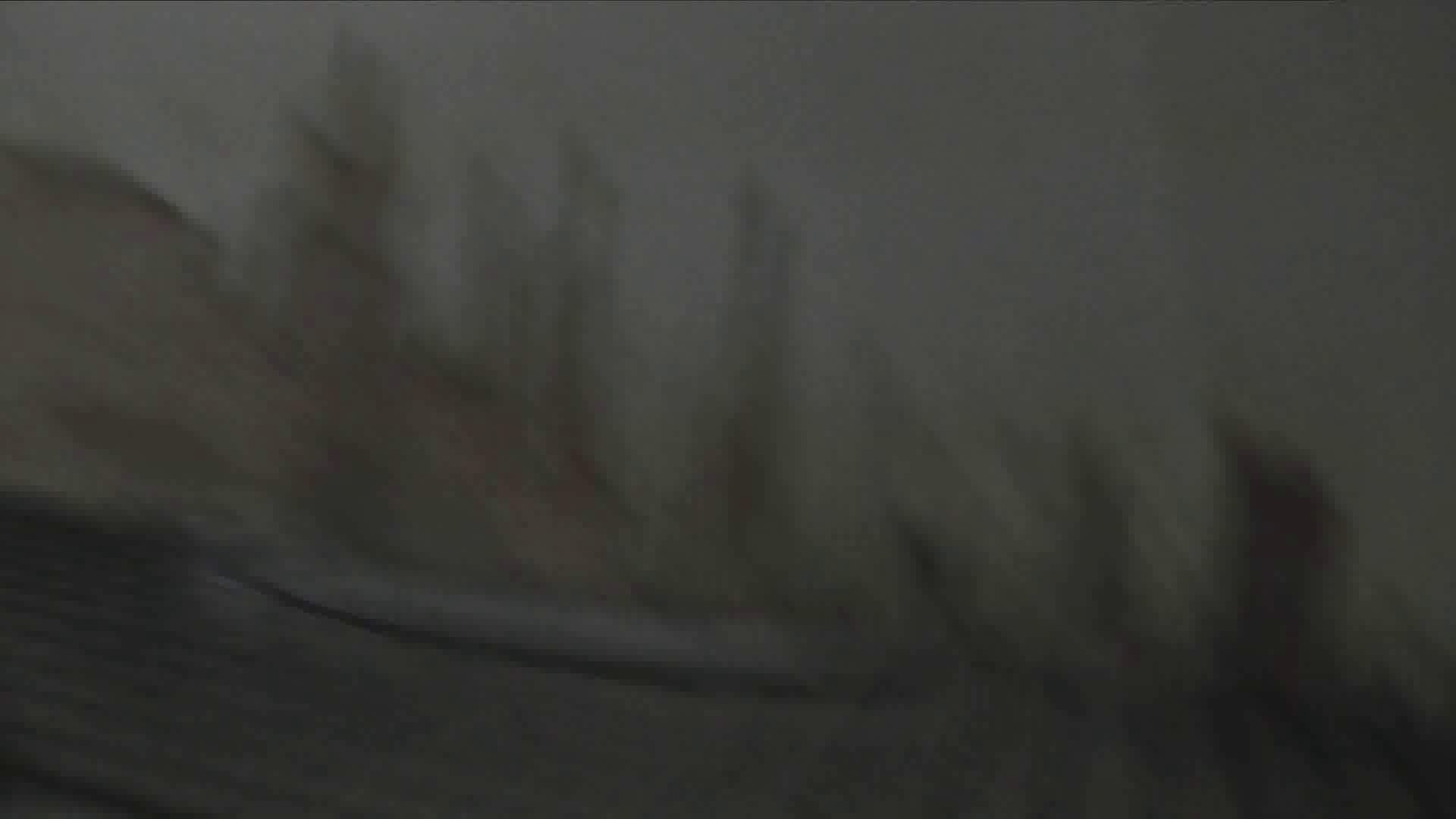 洗面所特攻隊 vol.027 ゴウモウ様 丸見えマンコ   洗面所  20画像 11