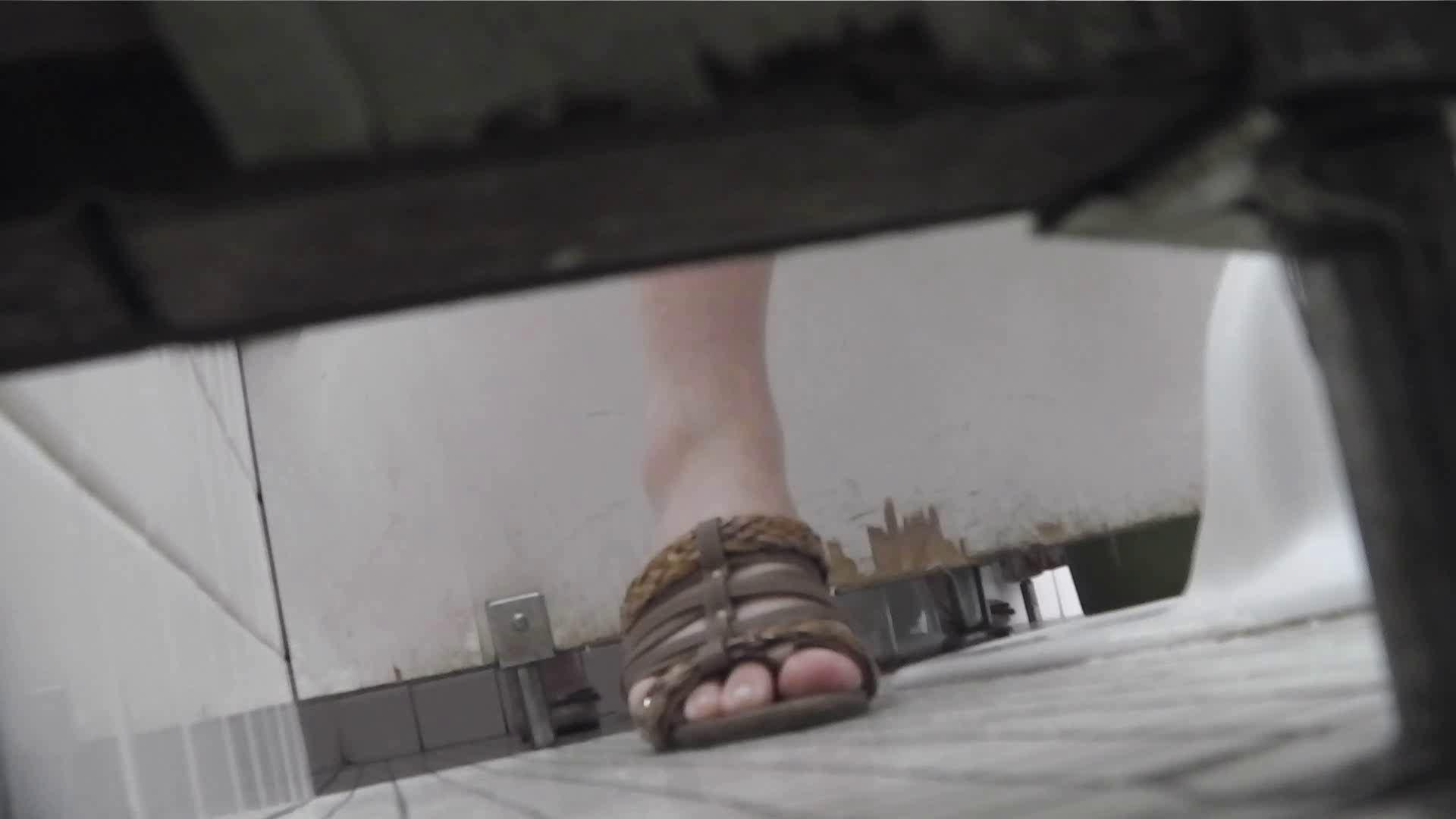 洗面所特攻隊 vol.027 ゴウモウ様 丸見えマンコ   洗面所  20画像 12