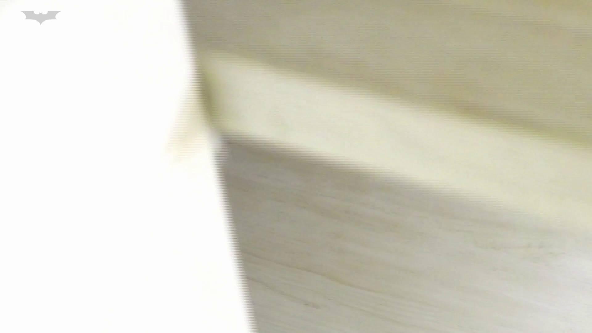 和式洋式七変化 Vol.31 洋式だけど丸見えですっ!! 丸見えマンコ | 高画質  96画像 24