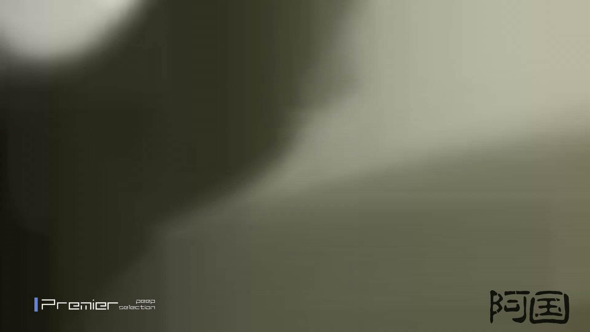 和式洋式七変化 Vol.34 最終作、 シリーズ最高の美人登場 丸見えマンコ   お姉さん  68画像 38