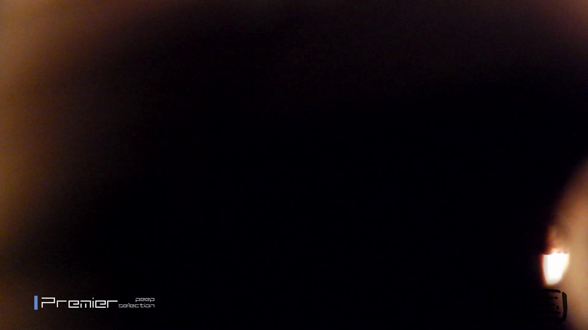 和式洋式七変化 Vol.34 最終作、 シリーズ最高の美人登場 丸見えマンコ   お姉さん  68画像 58
