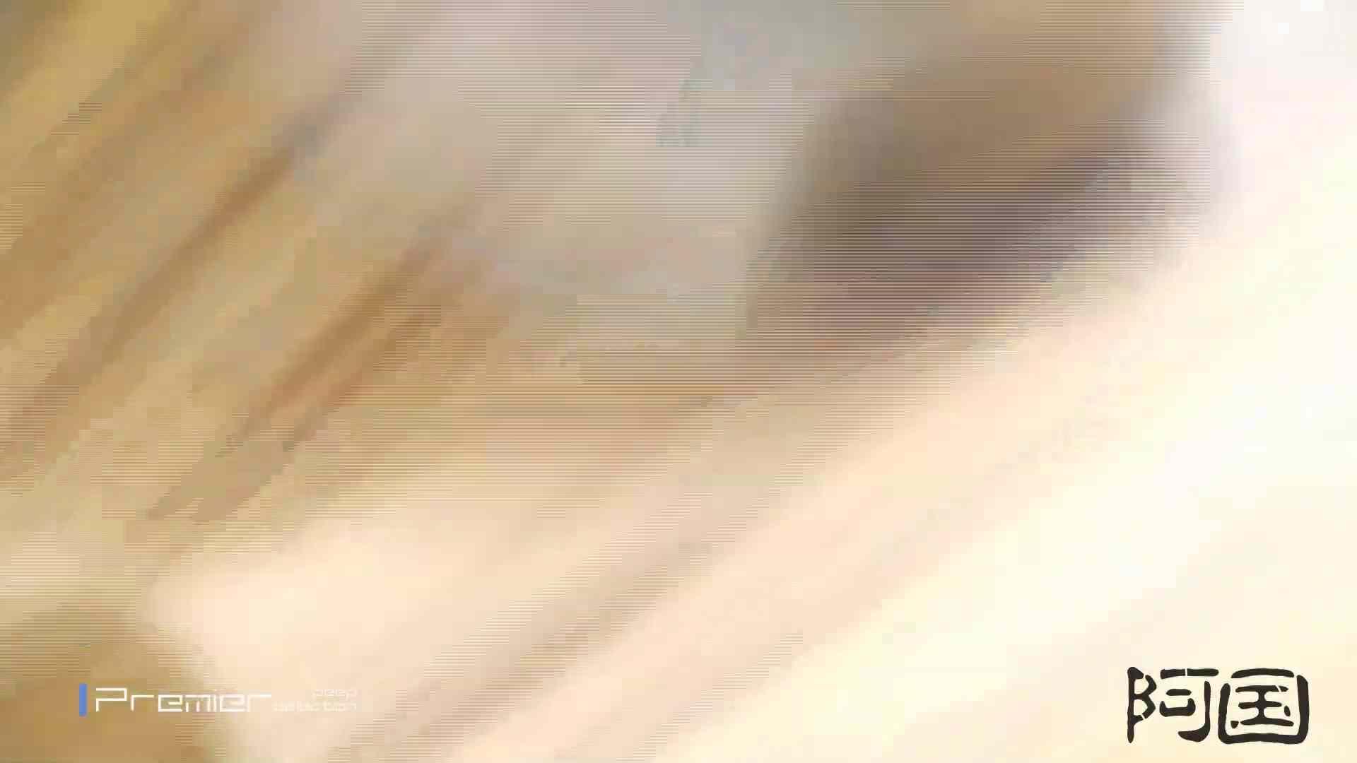 和式洋式七変化 Vol.34 最終作、 シリーズ最高の美人登場 丸見えマンコ   お姉さん  68画像 63